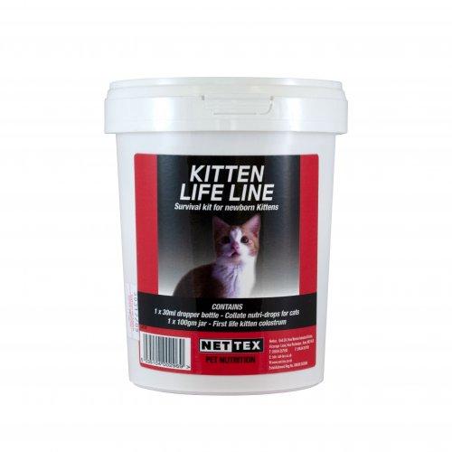 Lifeline for Kittens
